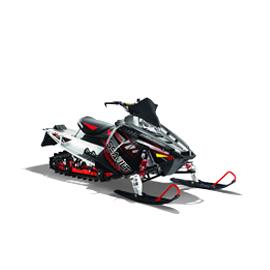 Снегомобили - моторни шейни